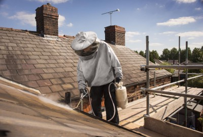 pest control takes care of wasps nest on roofline